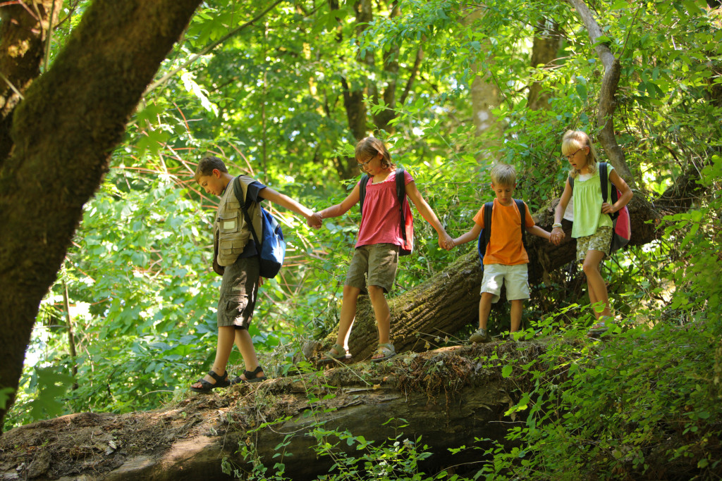 Group of kids in forest walking over log